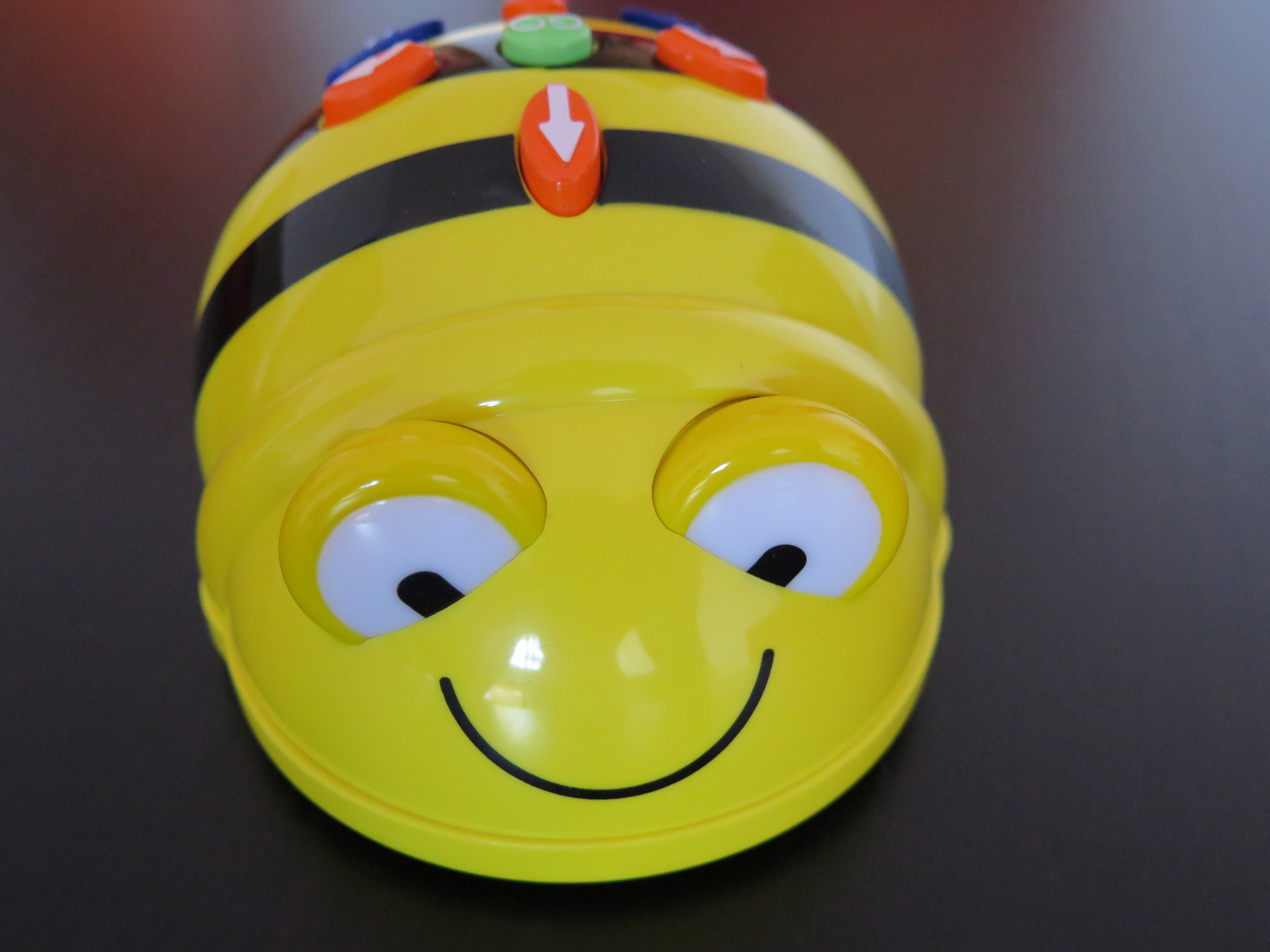 BeeBot1